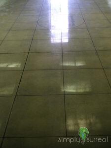 Floor Polished Concrete & Saw Cut